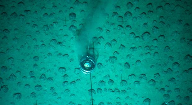Manganknollen auf dem Meeresgrund.