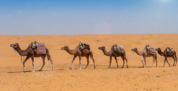 Ägyptens Tourismus leidet schwer unter den Aufständen im Land