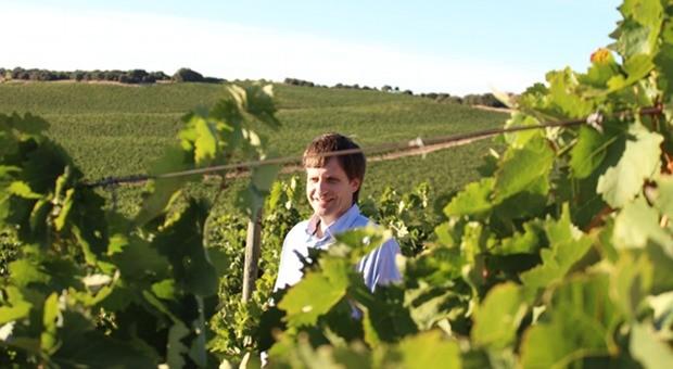 Angekommen: In den Weinbergen fand Fernando Rodriguez de Rivera Cremades seine Bestimmung.