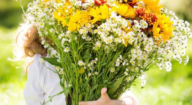 Floristik, PR-Beratung oder Weiterbildung: Kleinere Dienstleistungs-Betriebe werden in Deutschland häufig von Frauen geführt.