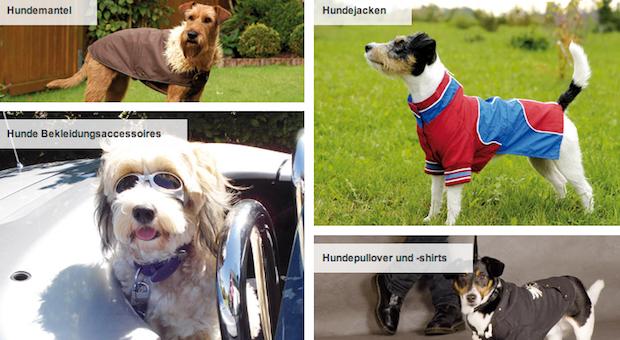 Screenshot von schecker.de. Der Webshop ist auf die Ausstattung von Hunden spezialisiert. Konkurrent zooplus.de hat sein Sortiment auch auf Kleintierbedarf ausgeweitet.