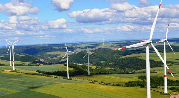 Blick auf einen Windpark in der Pfalz.