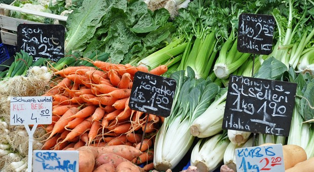 Für Karotten und andere leichter verderbliche Gemüse- und Obstsorten erhalten Landwirte wegen des russischen Import-Stopps Hilfen von der EU.