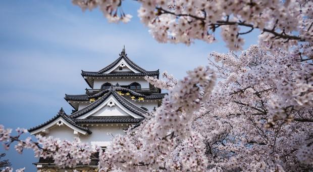 """Die neue Wirtschaftspolitik """"Abenomics"""" sollte die japanische Wirtschaft zu neuer Blüte führen."""