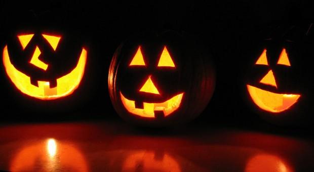 Kürbis-Fratzen gehören zu Halloween dazu.