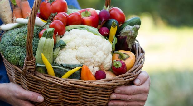Ein Gemüsekorb als Dank für die Crowdfunding-Unterstützer: Landwirte entdecken Finanzierungsmöglichkeiten im Internet.
