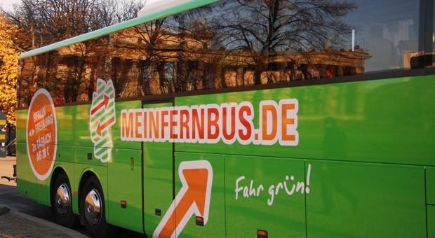 MeinFernbus ist bisher der größte Anbieter auf dem umkämpften Wachstumsmarkt.