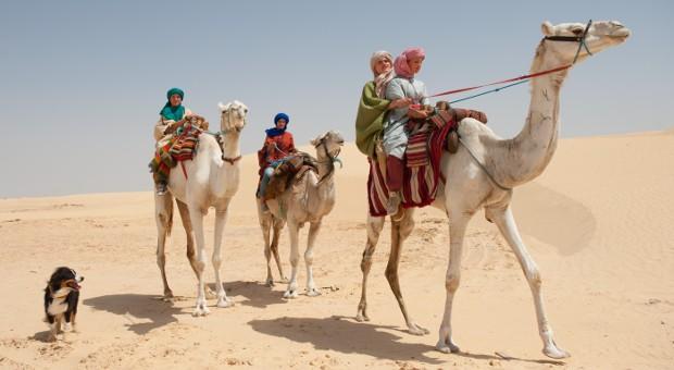 Die Fünf Freunde erleben ein spannendes Abenteuer in der Wüste.