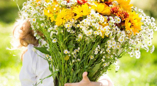 Blumen geburtstag arbeitnehmer