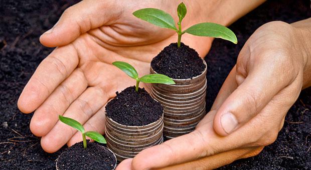 Grünes Engagement kann den Umsatz steigern - aber nur, wenn wirklich Corporate Social Responsibility dahinter steckt und nicht nur heiße Marketing-Luft