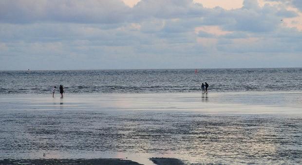 Wattwanderungen sind bei den Touristen an der Nordsee sehr beliebt.