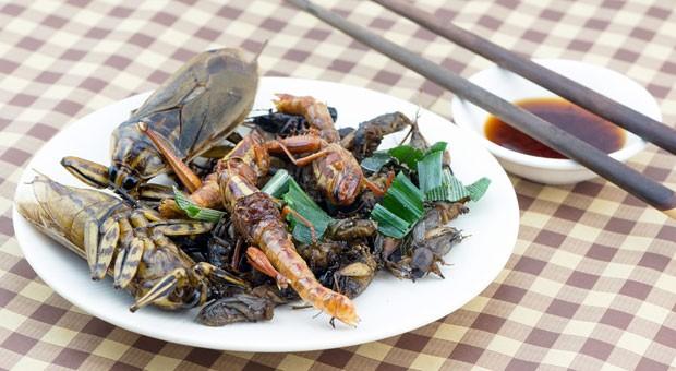"""Essen wir irgendwann mit Genuss Insekten-Mahlzeiten wie diese? Rose Wang von Six Foods glaubt daran. """"Wir müssen möglichst viele Proteine durch Insekten ersetzen"""", sagt sie."""