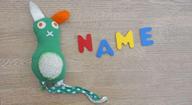 Wie ein neugeborenes Baby, braucht auch ein Start-up einen Namen.