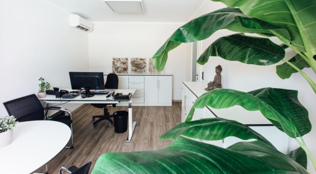 Ihr Büro hat die Unternehmerin Vanessa Weber bewußt eingerichtet: nach den Kriterien von Kaizen und Lean. © Dirk Möller