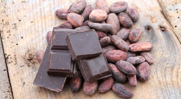 """Kakao, Kaffee, Bananen: Mit """"Fair Trade"""" sollen die Arbeits- und Lebensbedingungen von Kleinbauern verbessert werden."""