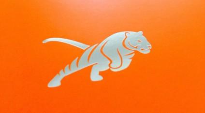 Nach der Einigung hat die Tiger Marketing Group GmbH jetzt ein neues Logo. Eine springende Raubkatze vor orangem Hintergrund.