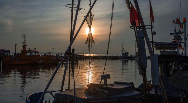 Sicherer Hafen? Von wegen! Nach dem Ende des Safe-Harbor-Abkommens ist ein neues verbindliches Regelwerk vorerst nicht in Sicht.