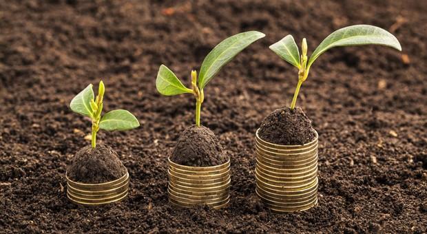 """Mit seinem Geld Gutes bewirken und eine gute Rendite erwirtschaften: Das versprechen Anlageprodukte, die auch als """"Social Impact Investment"""" bezeichnet werden."""