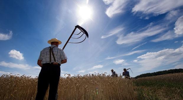 Anders als heute mussten Bauern früher das Wetter ohne Satelliten, Wetterkarten und Apps einschätzen. Falsche Prognosen konnten die Ernte kosten. An manche Bauernregeln können sich Hobbygärtner noch heute halten.