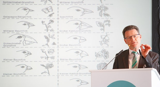 """""""Wer dauerhaft Erfolg haben will, muss sich spezialisieren."""" Jürgen Dawo, Gründer von Town & Country, veranschaulichte seine Aussage mit dem Beispiel des Darwinfinken: Nachdem sich auf einer Insel zu viele seiner Art angesiedelt hatten, entwickelte der Finke sich evolutionär weiter in Unterarten mit verschiedener Schnabelform, sodass die Vögel verschiedenartige Nahrung zu sich nehmen und so durch Spezialisierung bestehen konnten."""