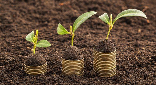 Geld fürs Wachstum: Das bietet der High-Tech Gründerfonds jungen Technologie-Unternehmen in der Seedphase.