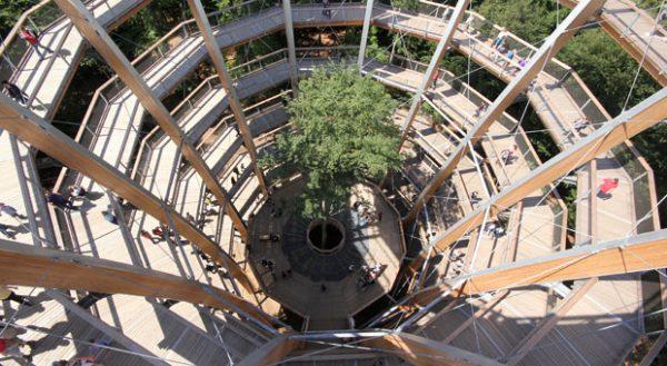 Schwindelfrei? Auf dem Baumwipfelpfad Steigerwald geht es hoch hinaus.