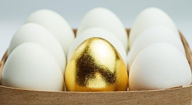 So wertvoll und selten wie ein goldenes Ei sind viele Spezialisten. Sie zu führen, bedeutet für Chefs eine Herausforderung.