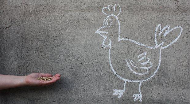 Für die Einwandbehandlung brauchen Sie keine verlockenden Körner, sondern überzeugende Argumente. Ihre Kunden sind schließlich keine dummen Hühner!