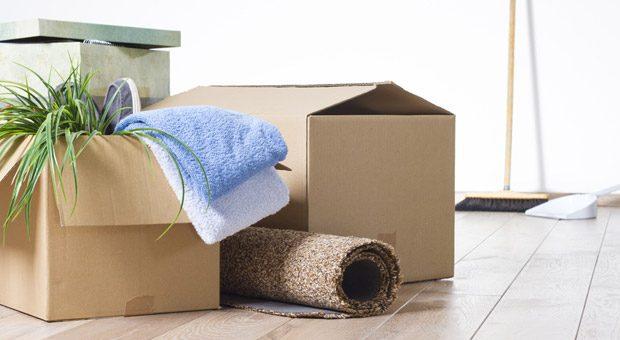 Teppich, Grünpflanze, allerlei anderen Hausrat, selbst Möbel kann man einem aktuellen Urteil zufolge bei doppelter Haushaltsführung absetzen, wenn die Zweitwohnung aus beruflichen Gründen besteht.