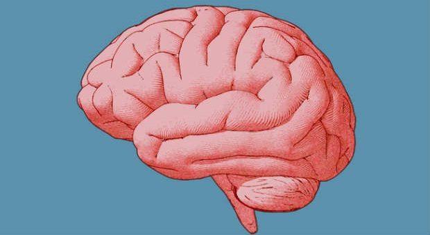 Kluge Chefs verbannen negative Gedanken aus ihrem Gehirn - und nutzen stattdessen den Pygmalion-Effekt.