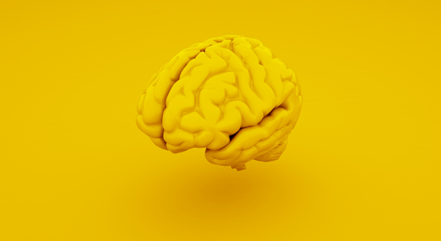 Intelligenz bedeutet nicht automatisch Erfolg - sondern für manche beruflichen Stillstand.