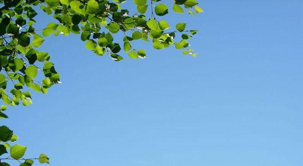 Im Urlaub einfach mal in den Himmel schauen, Zeit mit der Familie verbringen - das ist Björn Waide wichtiger, als permanent erreichbar zu sein.