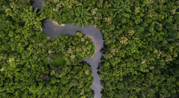 Marc Wallerts Dschungelstrategie hilft ihm auch während der Corona-Krise