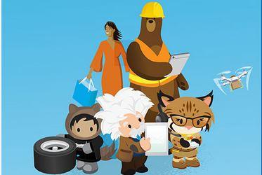 Salesforce Mittelstand